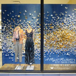 Butterfly window displays from Anthropologie
