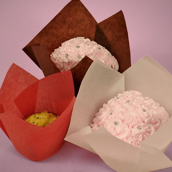 Basic Cake Box