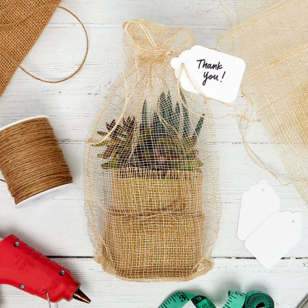 easy DIY gift idea: burlap wrapped succulent plant in a mesh bag