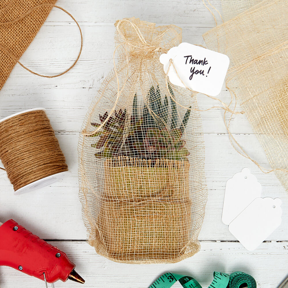flat lay of a wrapped succulent plant, merchandise tags, jute cord, and a Paper Mart hot glue gun