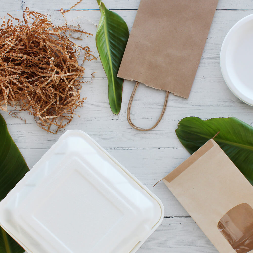 eco friendly Paper Mart food packaging flat lay with palm leaves